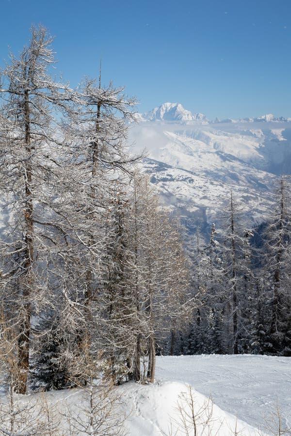 Sneeuw behandelde boomtakken en Mont Blanc-berg boven wolken Weergeven van La Plagne, Frankrijk van de skitoevlucht stock afbeeldingen