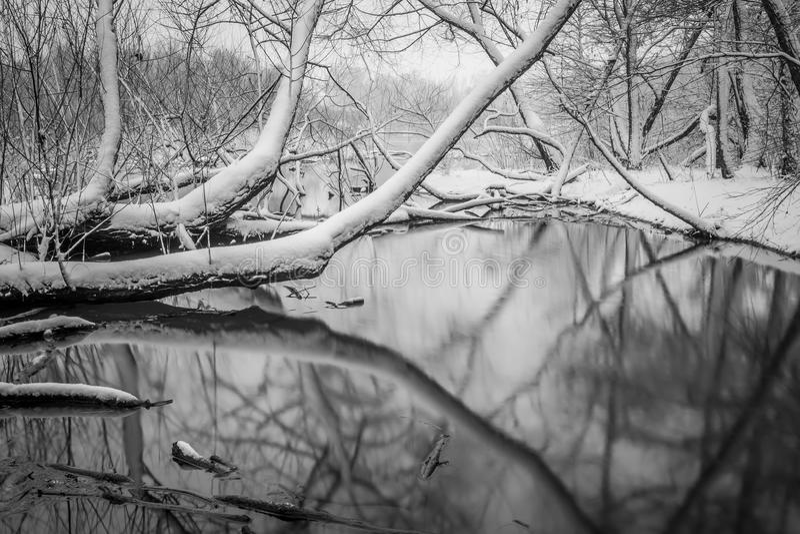 Sneeuw behandelde landschappen in belmont Noord-Carolina langs catawba royalty-vrije stock afbeelding