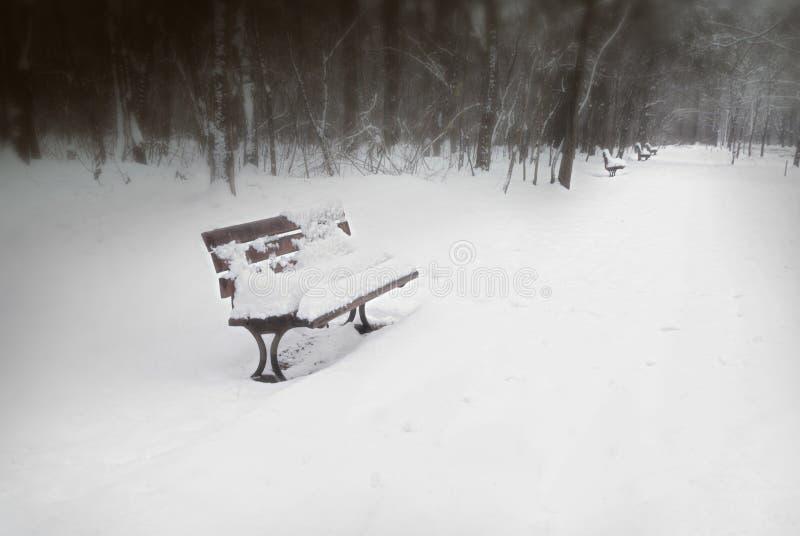Sneeuw behandelde parkbank royalty-vrije stock afbeeldingen
