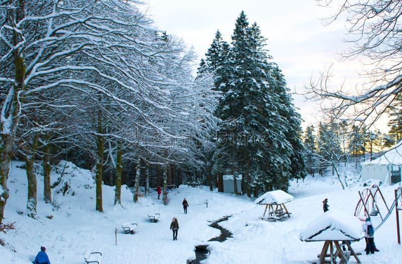 Sneeuw behandelde weg in Bergen stock fotografie