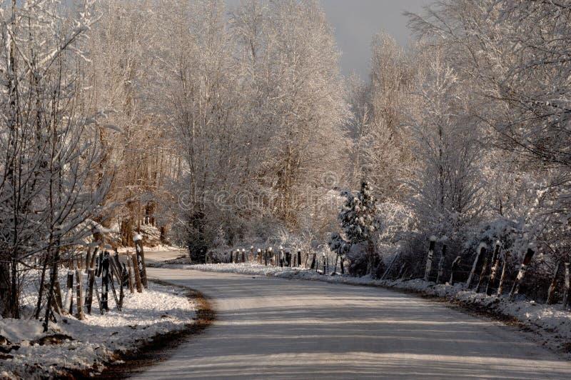 Sneeuw behandelde weg die door een sneeuwlandschap verdraaien stock afbeelding