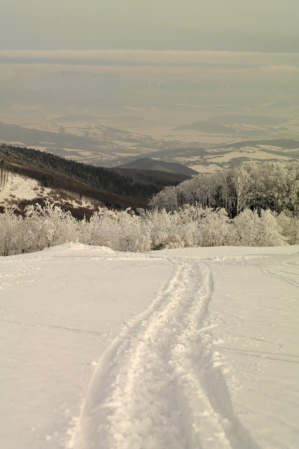 Sneeuw bergen in de winter stock foto's