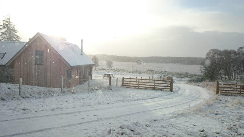 Sneeuw in Cairngorms royalty-vrije stock fotografie