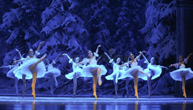 Sneeuw de elf-eerste handeling van het vierde Land van de gebiedssneeuw - de Balletnotekraker stock foto's