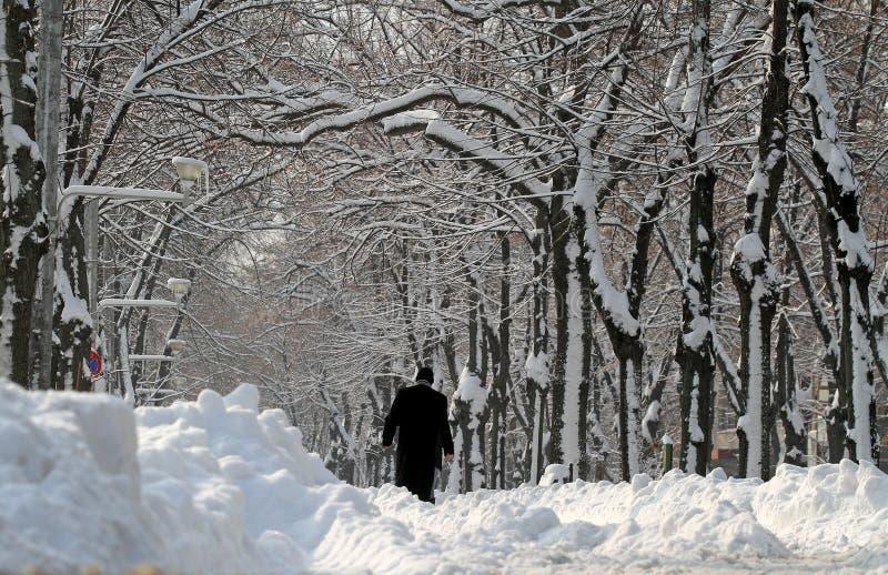 Sneeuw - de Extreme winter in Roemenië royalty-vrije stock foto's
