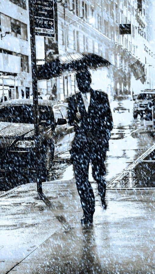 Sneeuw in de stad van New York stock foto's