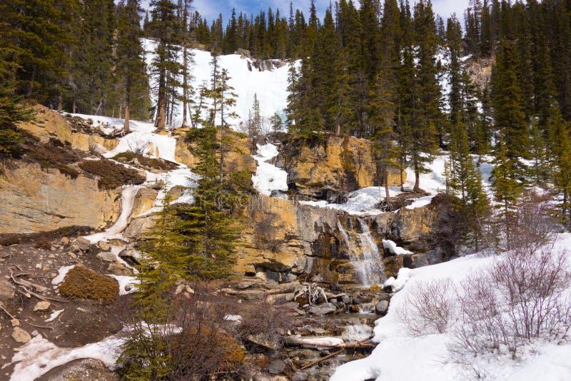 Sneeuw die in de Rotsachtige Bergen smelten stock afbeeldingen