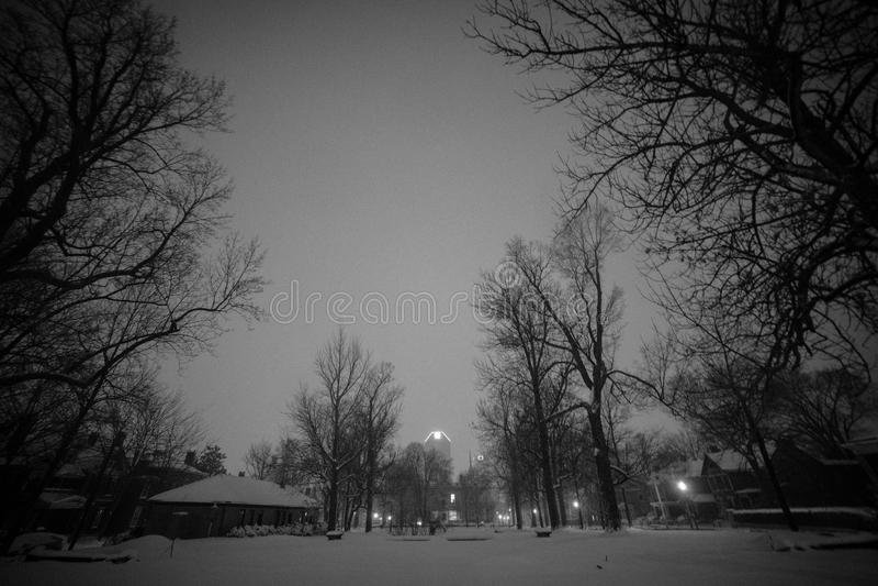 Sneeuw die Gratz-Park in Lexington, Kentucky behandelen stock afbeelding