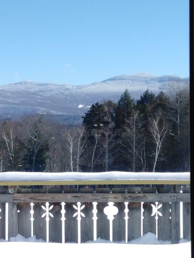 Sneeuw en bergen stock foto's