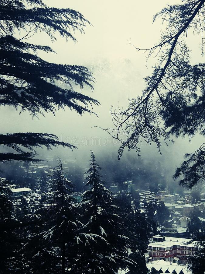Sneeuw en mist op bergen in India royalty-vrije stock fotografie