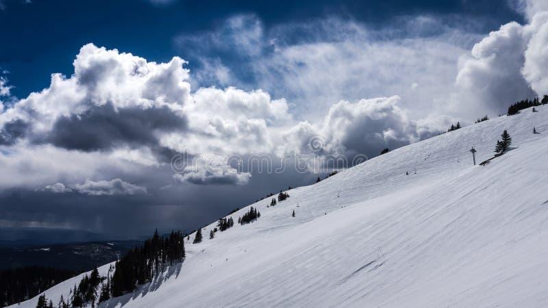 Sneeuw Fileds op het Hoge Alpiene Gebied van Zonpieken stock foto's