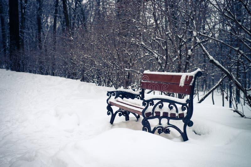 Sneeuw het landschaps openluchtachtergrond van de de winteraard royalty-vrije stock foto