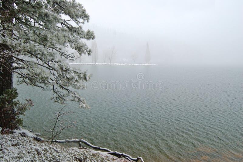 Sneeuw lakeshore royalty-vrije stock afbeelding