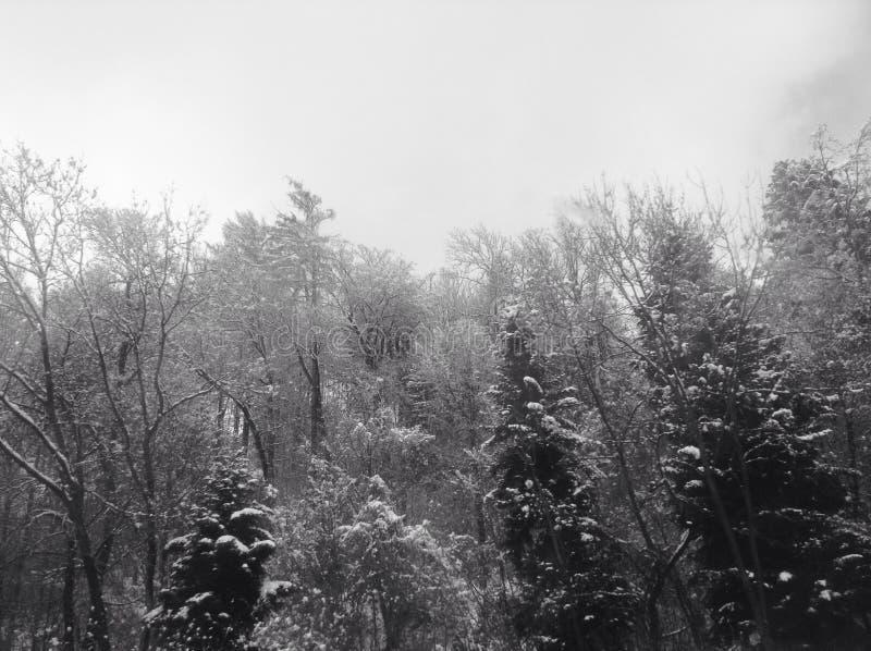Sneeuw maar toch mooi Oostenrijk royalty-vrije stock afbeelding