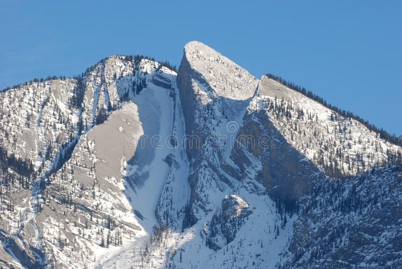 Sneeuw moutain in Rockies royalty-vrije stock afbeelding