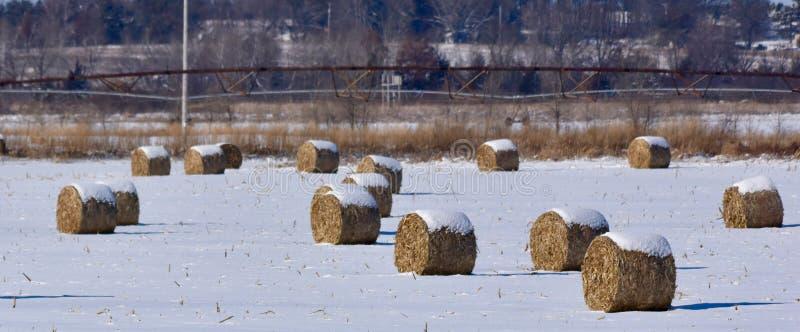 Sneeuw om Hay Bales wordt afgedekt dat royalty-vrije stock afbeeldingen