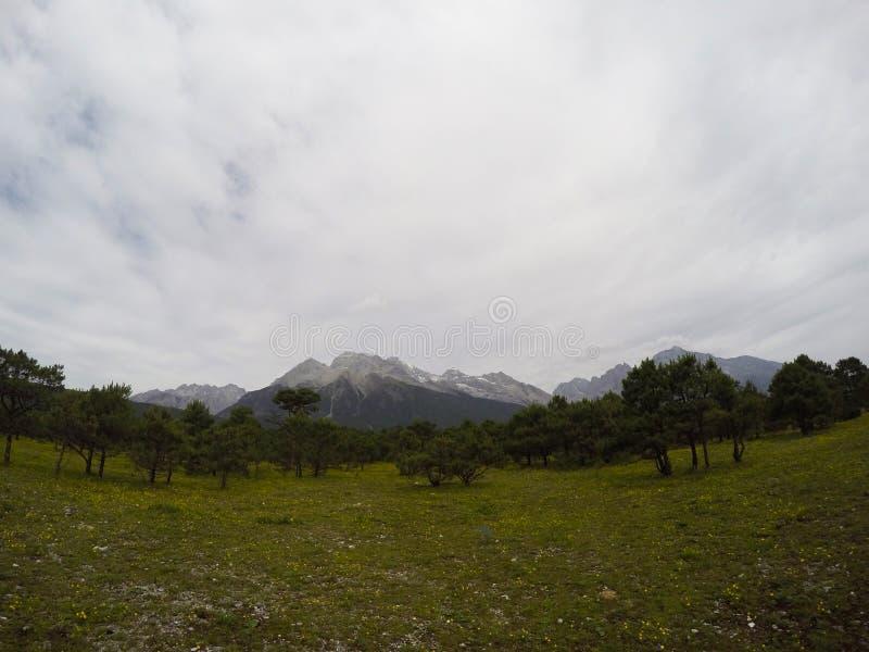 Sneeuw op de Berg royalty-vrije stock afbeelding