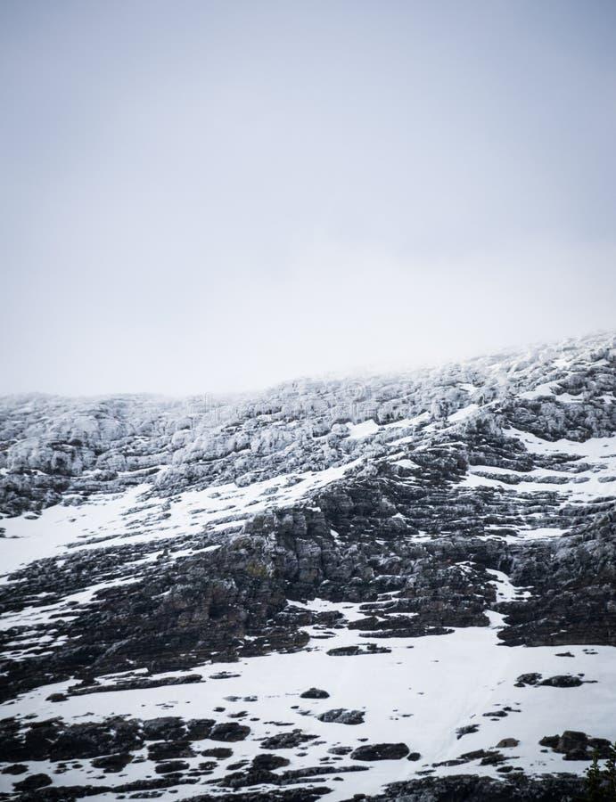 Sneeuw op de bovenkant van de berg in Gletsjer nationaal park 2 stock foto's