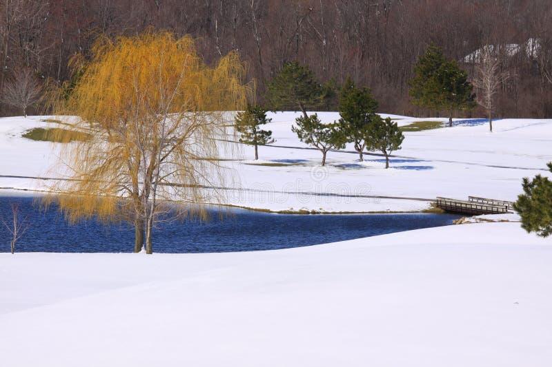 Sneeuw op de cursus van het Golf stock afbeeldingen