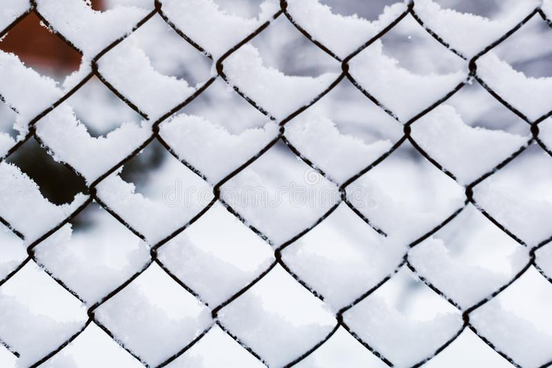 Sneeuw op het net Ijzernetwerk met sneeuw in de winter wordt behandeld die stock foto's