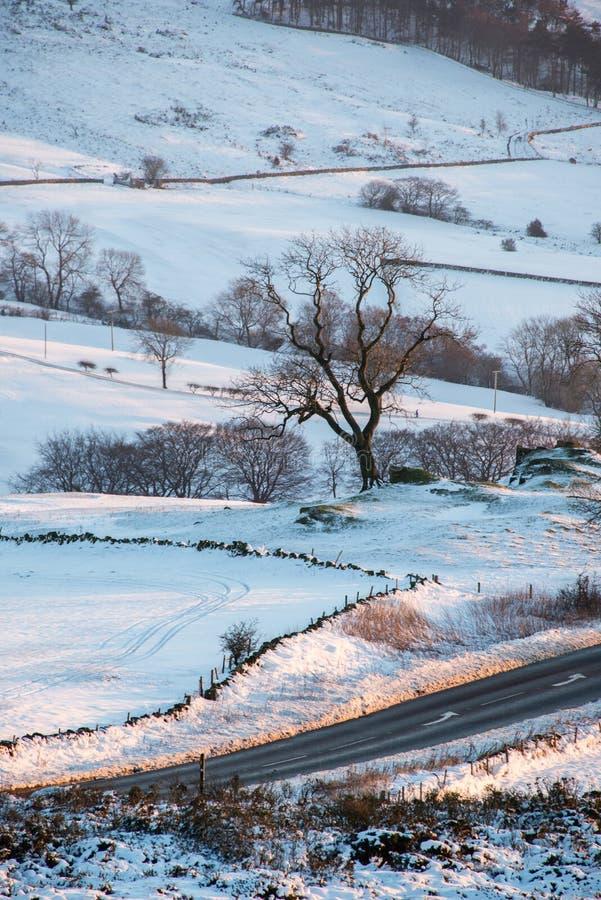 Sneeuw in platteland royalty-vrije stock fotografie