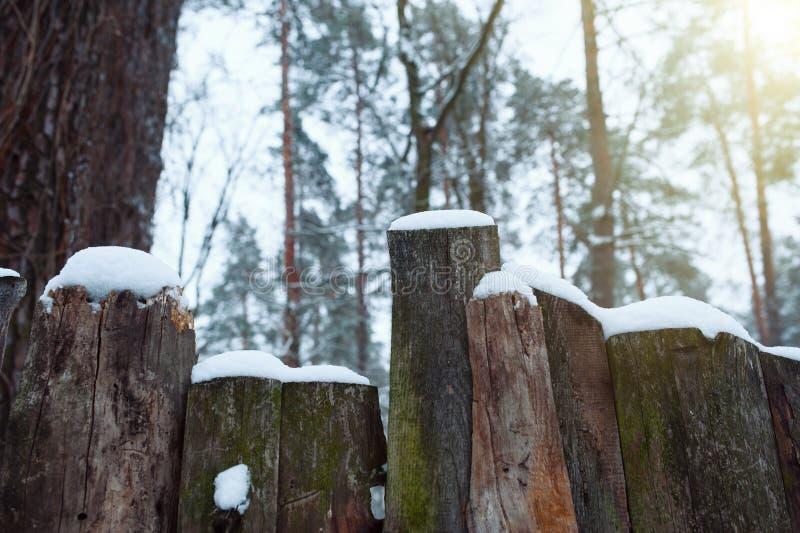 Sneeuw rustieke omheining in het platteland De sneeuwfonkelingen in de zon stock foto