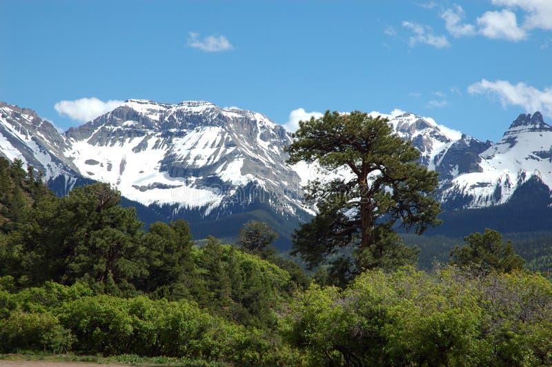 Sneeuw San Juan Mountains royalty-vrije stock afbeeldingen