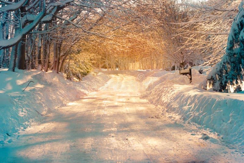 Sneeuw straat royalty-vrije stock foto's
