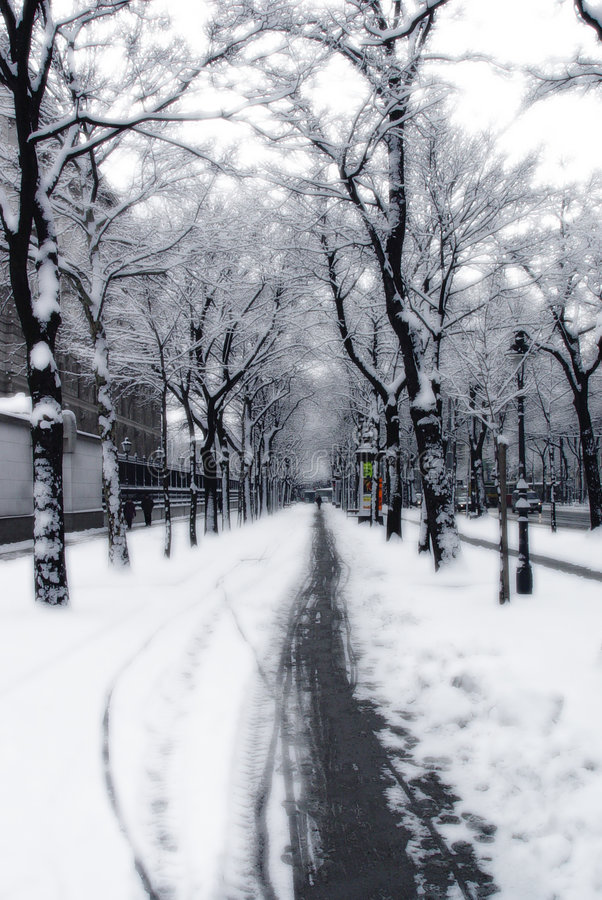 Sneeuw weg in Wenen stock afbeeldingen