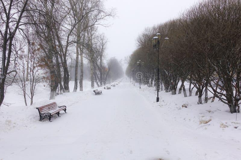 Sneeuw witte achtergrond met een steeg in het bosje De weg onder de de winterbomen met rijp tijdens een sneeuwval De daling van d stock afbeelding
