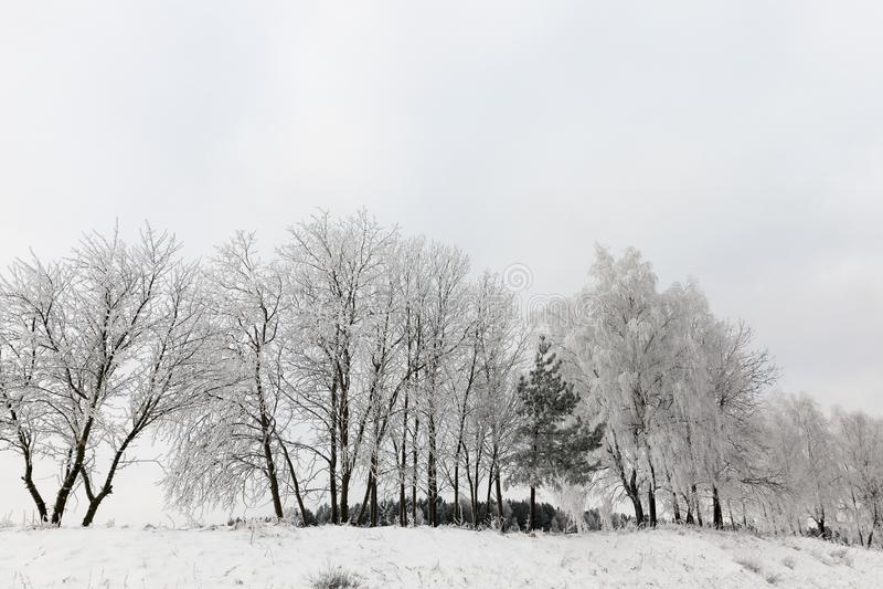 Sneeuwafwijkingen in de winter royalty-vrije stock afbeelding