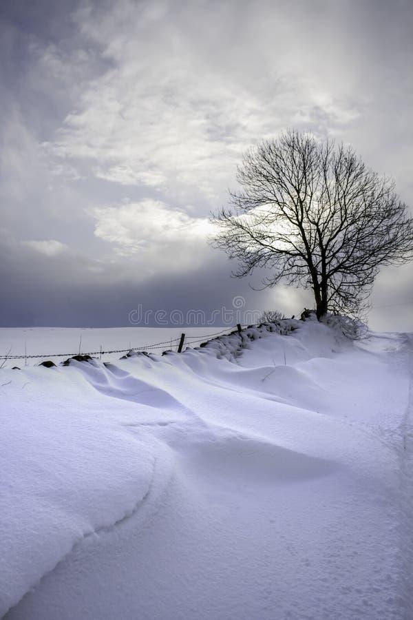 Sneeuwafwijkingen op een landelijke weg stock afbeeldingen