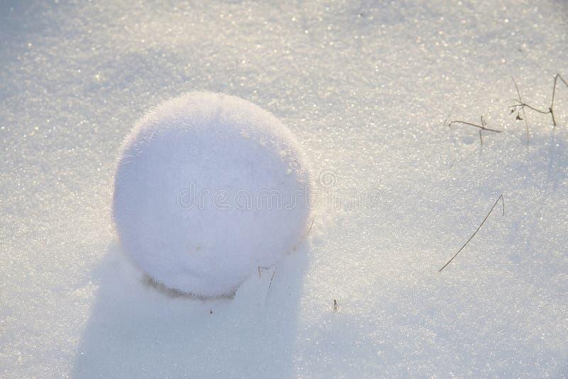 Sneeuwbal royalty-vrije stock afbeelding