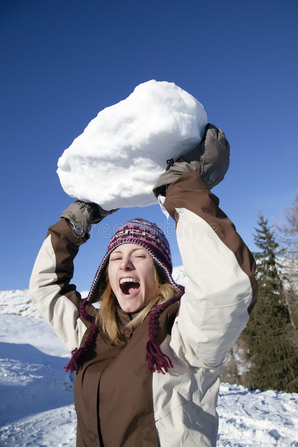 Sneeuwbal stock fotografie