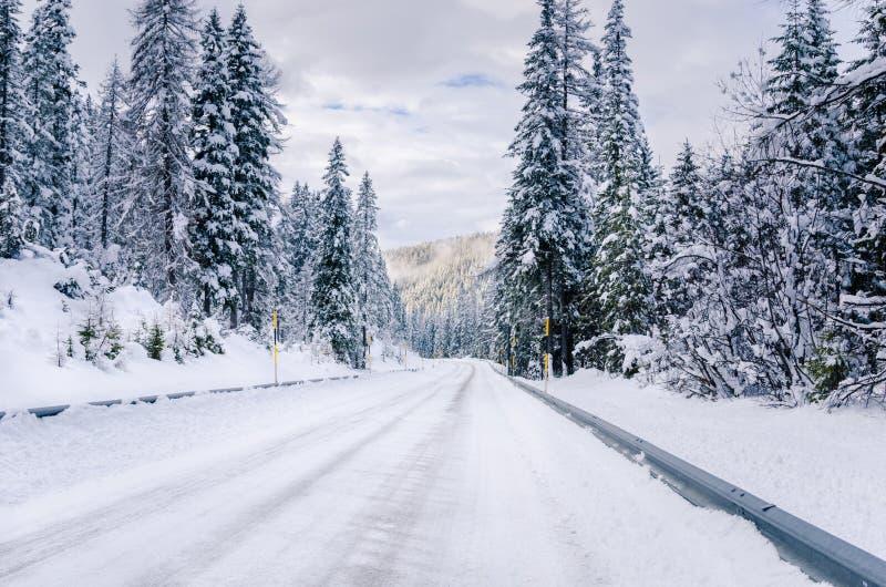 Sneeuwbergweg in de Europese Alpen royalty-vrije stock foto's