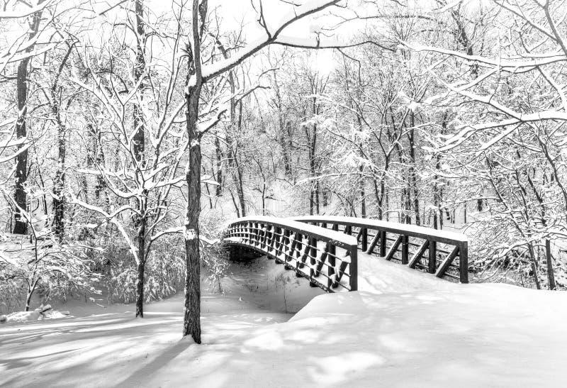 Sneeuwbrug stock fotografie