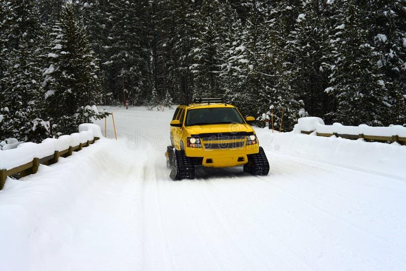 Sneeuwbus royalty-vrije stock foto's