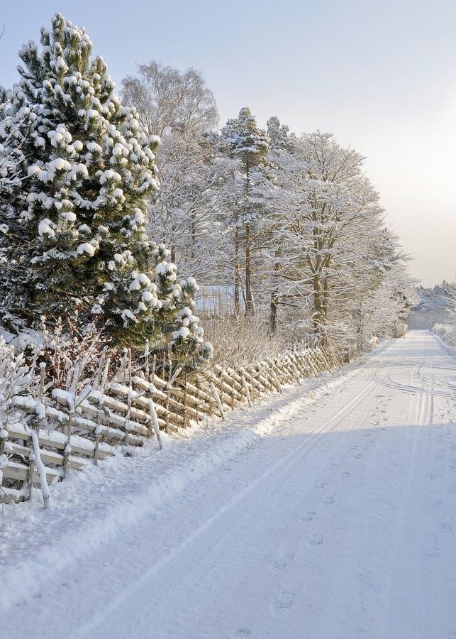 Sneeuwcountrsideweg royalty-vrije stock foto