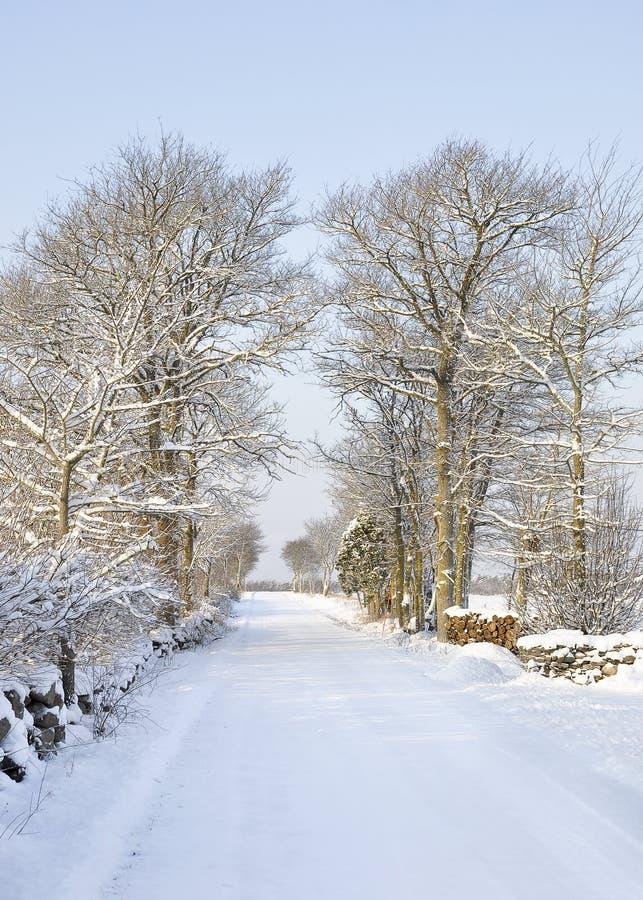 Sneeuwcountrsideweg stock fotografie