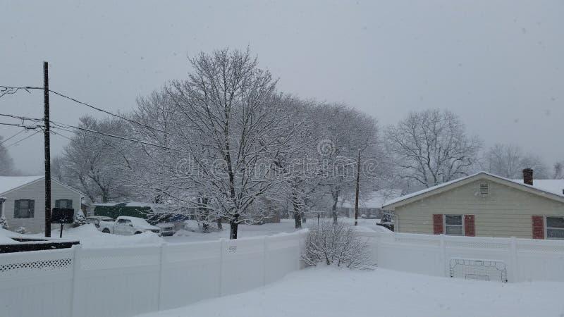 sneeuwdag royalty-vrije stock foto
