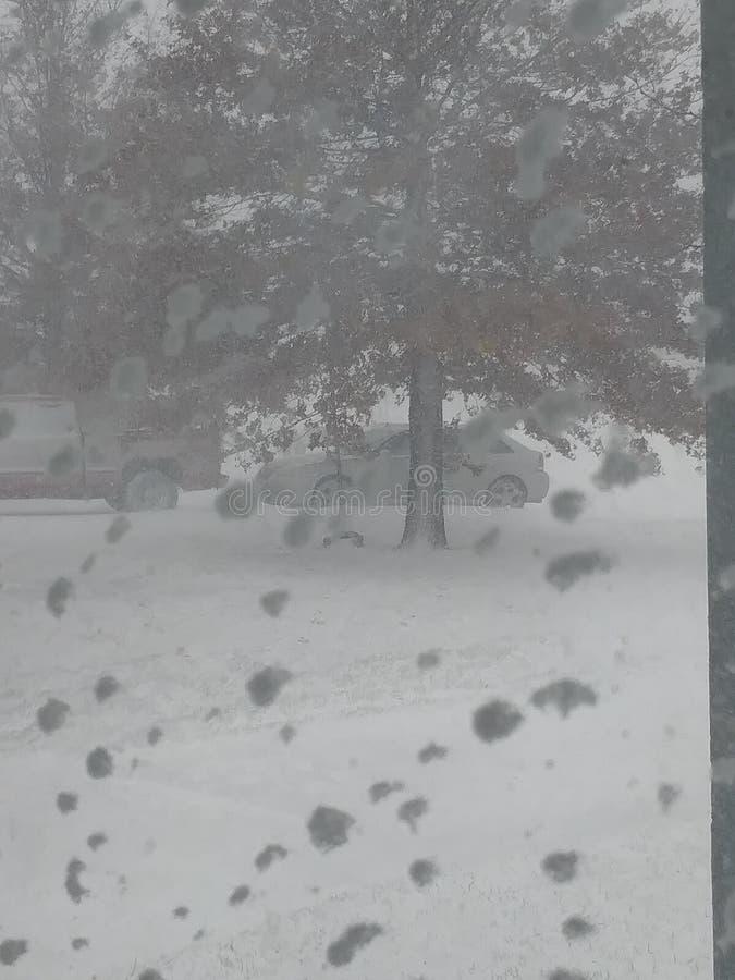 Sneeuwdag royalty-vrije stock fotografie
