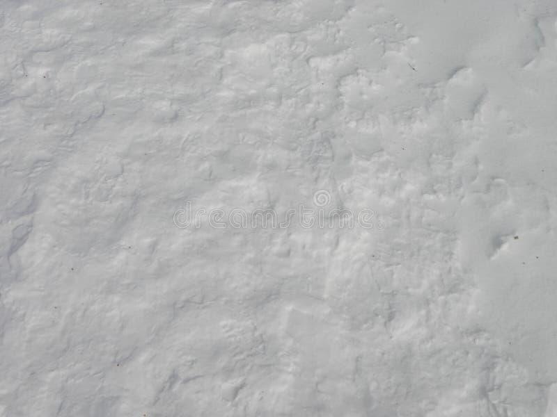 Sneeuwdekking en maagdelijke, zuivere textuur royalty-vrije stock afbeeldingen
