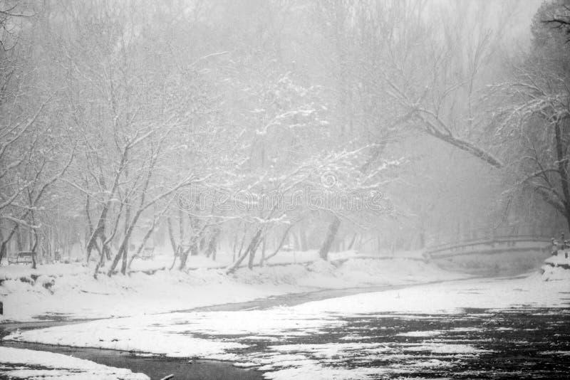 Sneeuwend landschap in het park stock afbeeldingen