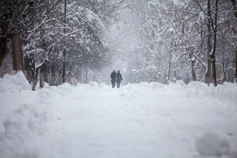 Sneeuwend landschap in het park met mensen die overgaan door royalty-vrije stock fotografie