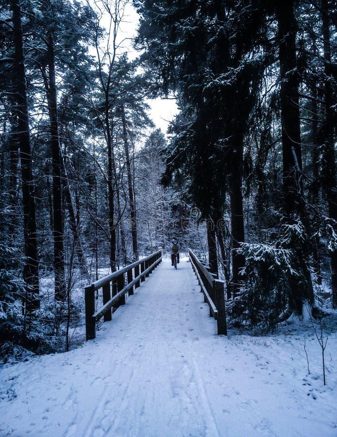 Sneeuwfietswegen stock afbeeldingen
