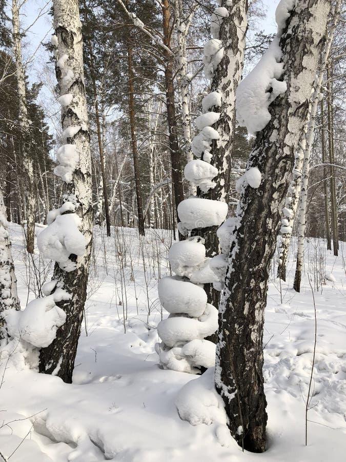 Sneeuwheemst royalty-vrije stock afbeelding