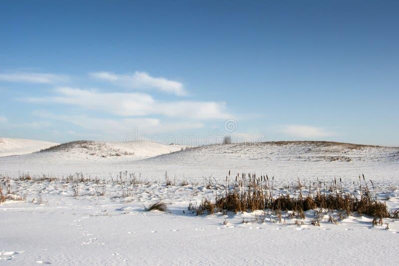 Sneeuwheuvels in de winter stock afbeelding
