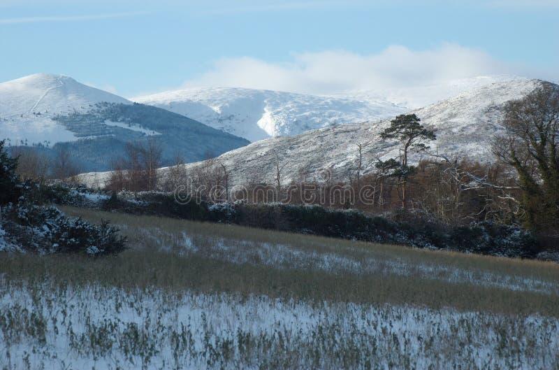 Sneeuwheuvels, Wicklow, Ierland stock fotografie
