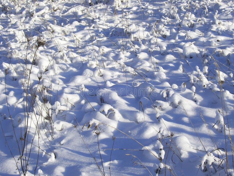 Sneeuwheuveltjes over gras op gebied stock afbeelding