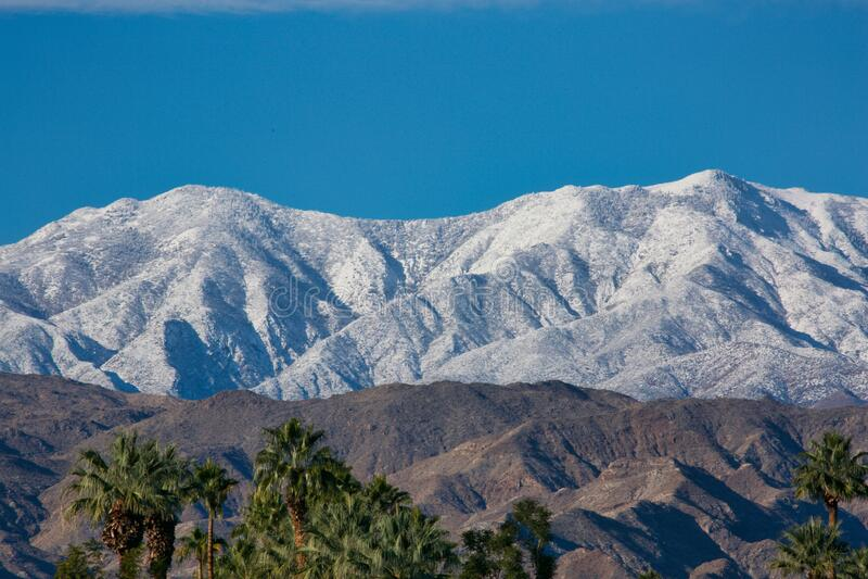 Sneeuwkapte bergen palmboom stock fotografie